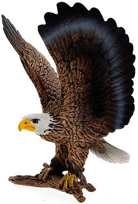 Белоголовый орлан худи print bar белоголовый орлан