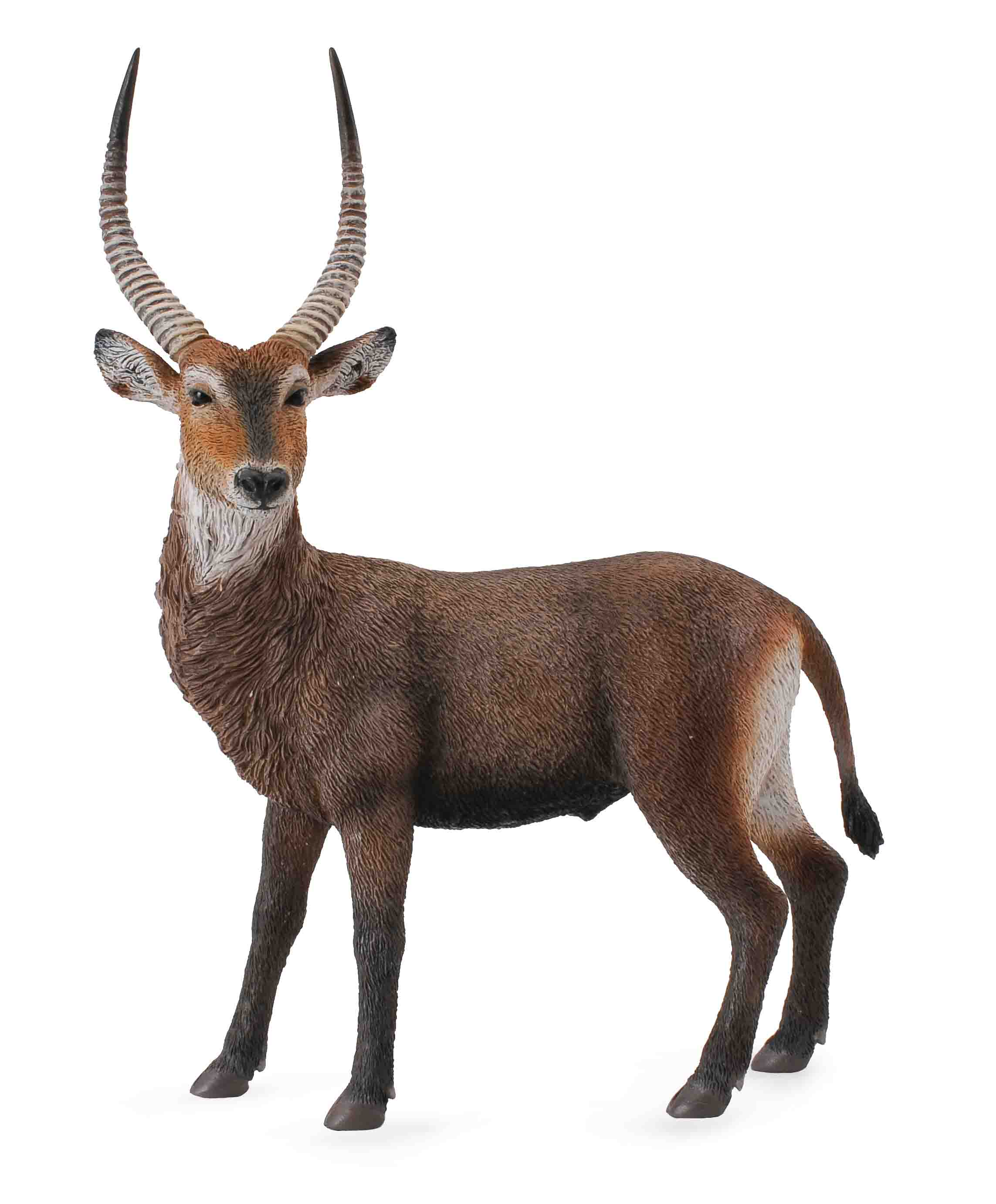 Фигурка животного Водяной козел, длина 13.5 смВодяной козел от компании Collecta - это отличная фигурка животного, длина которой составляет 10 сантиметров. Представленное изделие может послужить прекрасным развлечением для ребенка, помимо этого, такой фигуркой можно украсить какую-нибудь книжную полку, также ее можно поставить на письменный стол.<br>
