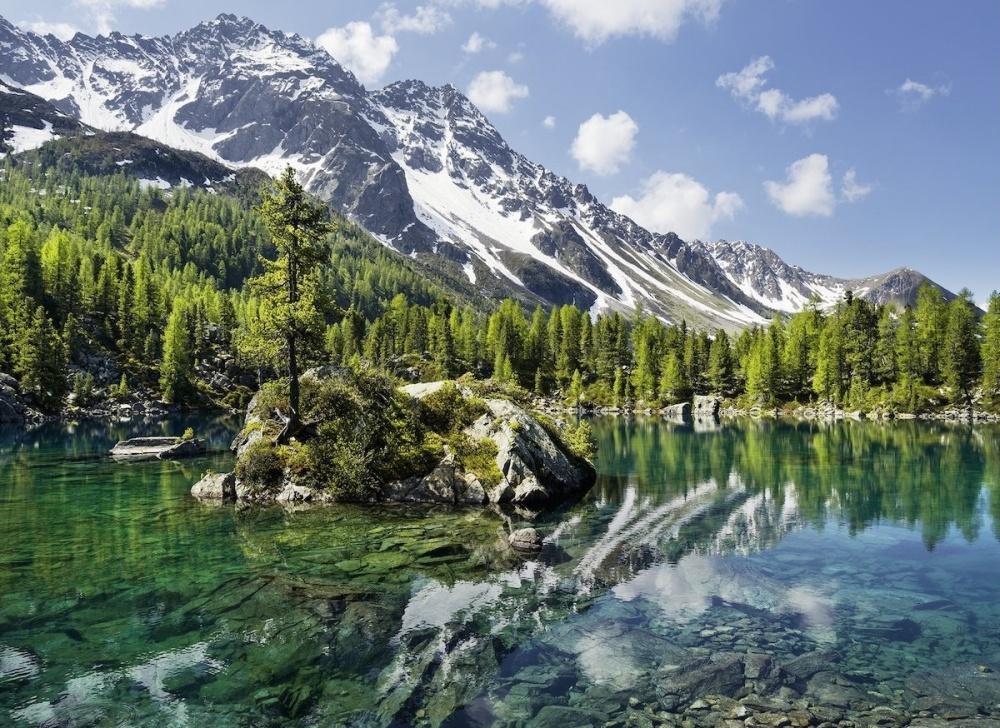 Пазл Ravensburger Волшебная гораЕсли собрать пазл Волшебная гора, то получится замечательная картинка с великолепным пейзажем, на котором изображены снежные горы, прозрачная ледяная вода и зеленые леса. Картинка состоит из 1500 элементов.Детали пазлов выполнены из качественного картона и плотно присоединяются друг к другу без зазоров. У них своя определенная форма, и они подходят только на свои места.Такой удивительный пазл надолго увлечет не только детей, но и взрослые с удовольствием будут собирать детали головоломки. Подобные занятия способствуют развитию образного и творческого мышления, усидчивости, внимательности и координации движения.Готовой картиной можно украсить интерьер комнаты.<br>