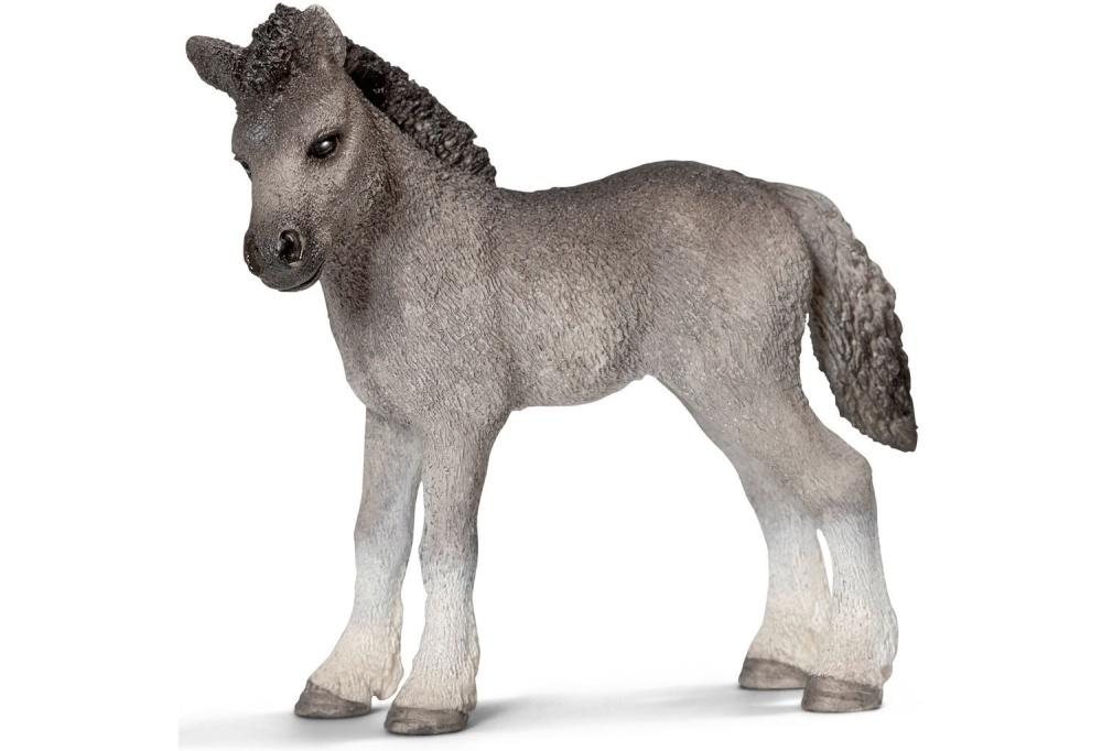 Фелл пони, жеребенок