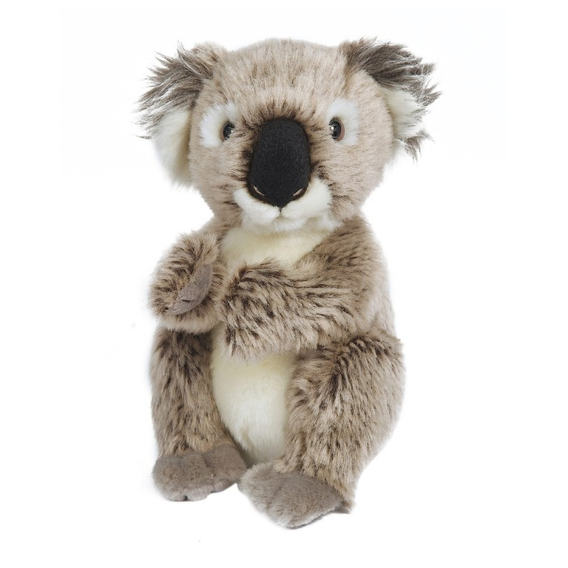Игрушка плюшевая Малыш КоалаМногие дети неравнодушны к царству зверей. Этот замечательный малыш коала прекрасно дополнит вашу коллекцию игрушек от Hamleys.<br>