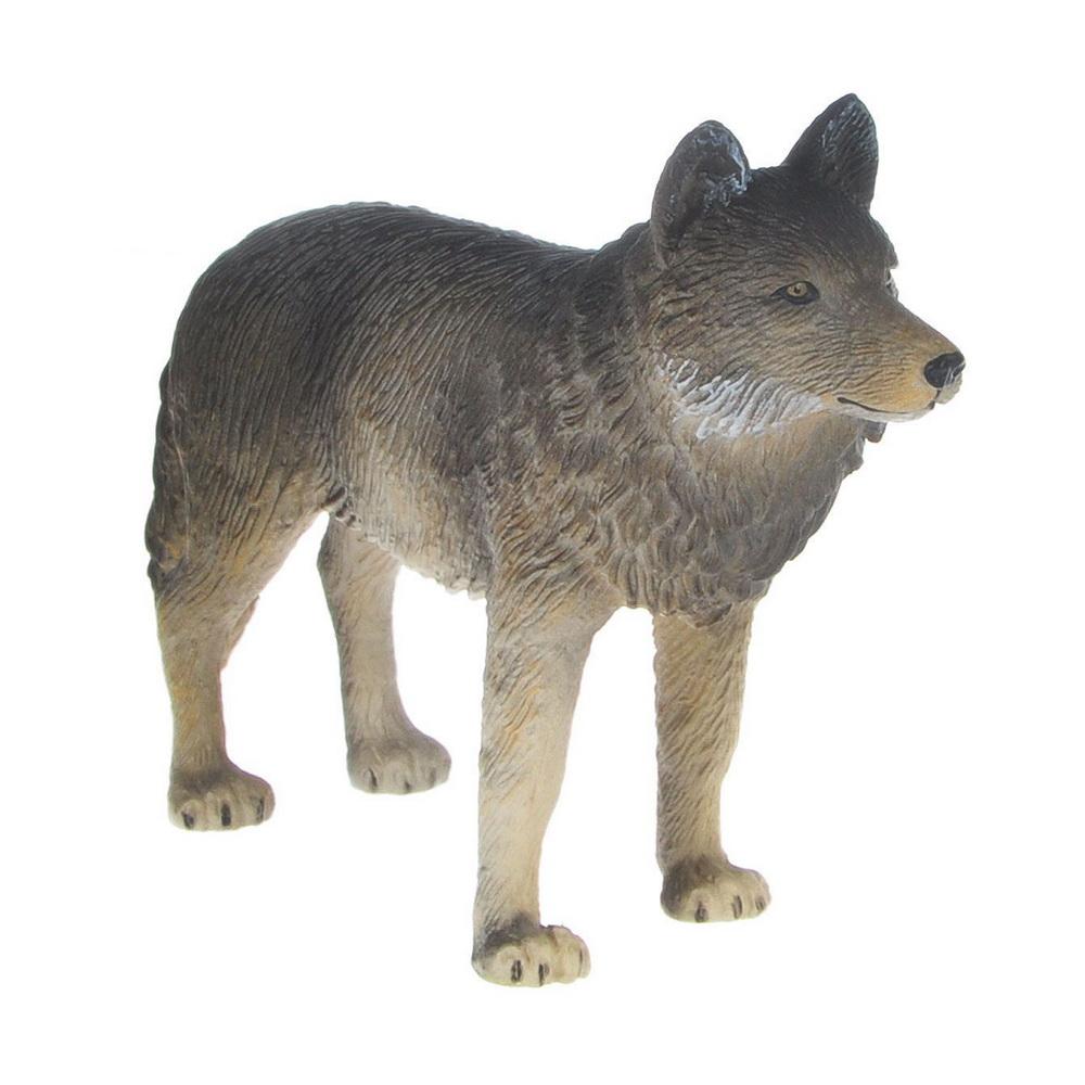 Волк (M)Волк - это хищное млекопитающее, которое относится к отряду хищные, семейству псовые (собачьи, волчьи).Русское слово волк созвучно с некоторыми славянскими названиями зверя: болгары называют хищника вылк, сербы - вук, украинцы - вовк. Происхождение названия восходит к старославянскому слову вылкъ, означавшему таскать, уволакивать.Большинство волков - хищники среднего и большого размера, наиболее крупными являются серый и полярный волки: их рост в холке может достигать 85 см, а длина туловища без учета хвоста составляет 150-160 см. Размер и вес хищников полностью соответствуют правилу Бергмана: чем суровее среда обитания - тем крупнее зверь, поэтому самые большие волки весом до 85-90 кг обитают в Сибири, хотя средняя масса волка составляет около 35-50 кг. Самые мелкие - это аравийские волки, их максимальный рост в холке составляет всего 66 см, а вес самок не превышает 10 кг. У любой разновидности волков самки мельче самцов.Внешне волки похожи на больших собак с сильным, мускулистым телом и высокими ногами, только гривистые волки больше напоминают длинноногих лисиц, а красные волки обладают особенностями волков, лисиц и шакалов. У хищников длинный и толстый хвост, который у некоторых видов вырастает до 56 см в длину и всегда опущен вниз. Голова волка массивная, с высоко поставленными острыми ушами, а морда - удлиненная и широкая. Череп красного и гривистого волков по форме напоминает лисий.Фигурка Mojo Волк познакомит детей с окружающим миром, разовьет творческие способности и расширит возможности ролевых игр. Фигурка выполнена из высококачественных материалов с максимальной точностью, раскрашена вручную.<br>