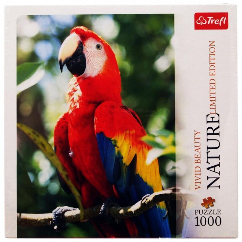 цена  1000 дет.- Красный попугай ара  онлайн в 2017 году
