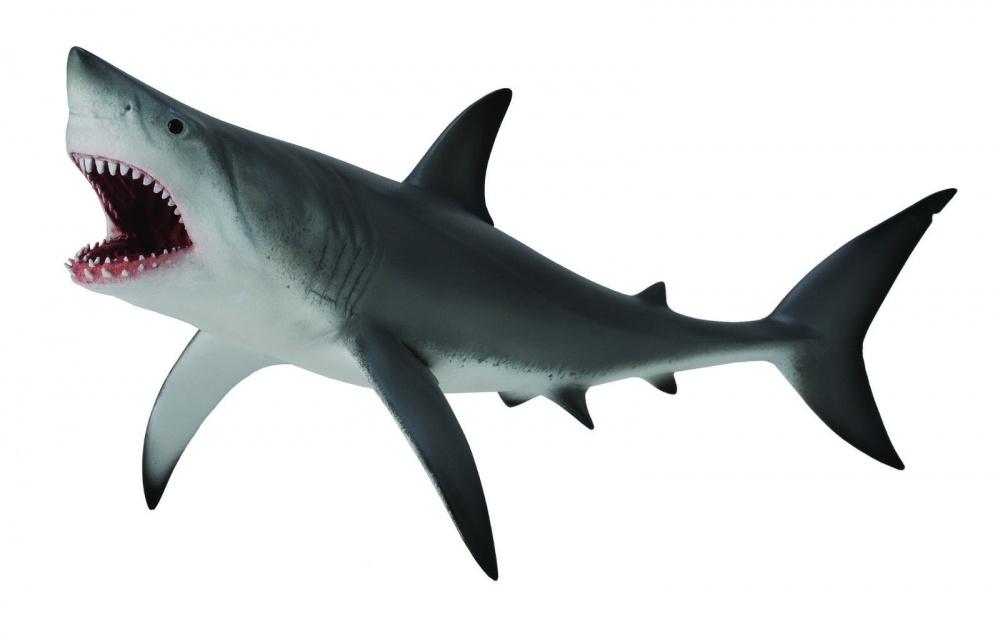 Акула большая белая (XL)Реалистично изготовленная фигурка «Большая белая акула» изображает одного из опаснейших морских хищников. Акула имеет высокую степень проработки внешнего вида и дает полное представление о том, как выглядит настоящая рыба. Окрашена фигурка в естественные природные цвета, а ее длина достигает 20.5 см.<br>