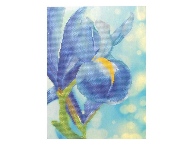 Картина мозаикой Ирис, 28 цветовСоздание мозаики – это захватывающий и увлекательный творческий процесс, занятие для души и отдых от повседневных забот. С помощью этого набора вы можете создать настоящий рукотворный шедевр. Камушек за камушком и основа картины будет закрываться блестящим панцирем. Готовая картина станет прекрасным украшением вашего дома.Комплектация:- тканевый холст с клеевым слоем и с нанесенной схемой рисунка;- металлический пинцет;- пластиковый контейнер для элементов мозаики;- специальный карандаш;- клей-липучка для карандаша;- комплект разноцветных мозаичных элементов диаметром 2,5 мм.<br>