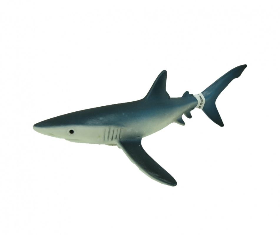 Голубая акулаФигурка голубой акулы от немецкого производителя «Шляйх» станет интересным дополнением коллекции мира дикой фауны. Если ваш ребенок любит естественные науки и интересуется окружающим миром, порадуйте его новым видом: голубая акула обитает на глубине до 280 метров, питается костными рыбами и ракообразными, а мясо такой акулы очень ценится в современном мире.Изделие выполнено из каучукового пластика, его сложно сломать или испортить. Внешне фигурка выглядит очень реалистично: ее окрас, глаза, плавники - все это в точности повторяет настоящую акулу. При этом расписана она вручную, вплоть до деталей, благодаря чему вы можете рассматривать фигурку даже вблизи и наслаждаться качеством ее исполнения.Коллекции от «Шляйх» интересны не только детям, но и самим взрослым. Вместе с тем, такие изделия пробуждают интерес к географии и биологии, развивает любознательность и позволяет узнавать новое об окружающем мире. Заказать товар по выгодной цене можно на сайте интернет-магазина Hamleys или в розничных магазинах в Москве, Санкт-Петербурге и Московской области. При этом вы можете выбрать курьерскую доставку и оплатить ее одним из предложенных способов.<br>