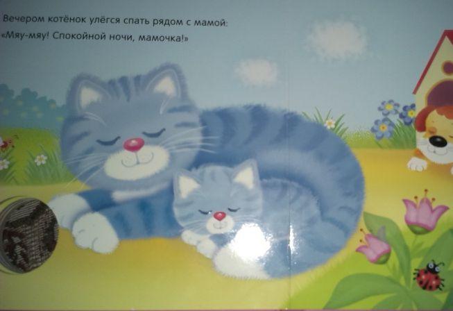 Звуковые книжки Мяу-мяу! британского вислоухого котенка в солнечногорске
